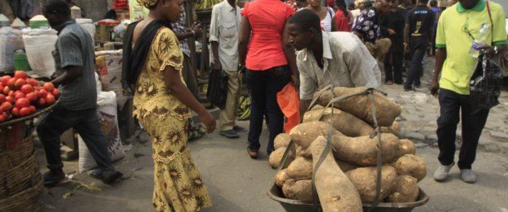 Le Nigeria commence à exporter des ignames vers l'Europe et les Etats-Unis