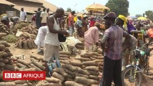 Nigéria : l'igname, le nouveau pétrole?