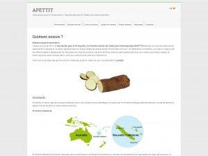 L'ensemble du site disponible en langue espagnole